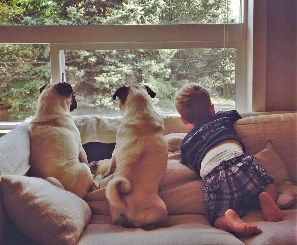 Watching out the window for strangers isn't sufficient.